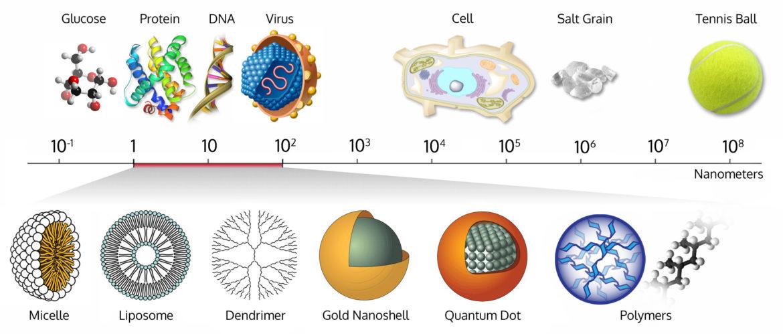 Size-comparison-Bio-nanoparticles-1-1170x499